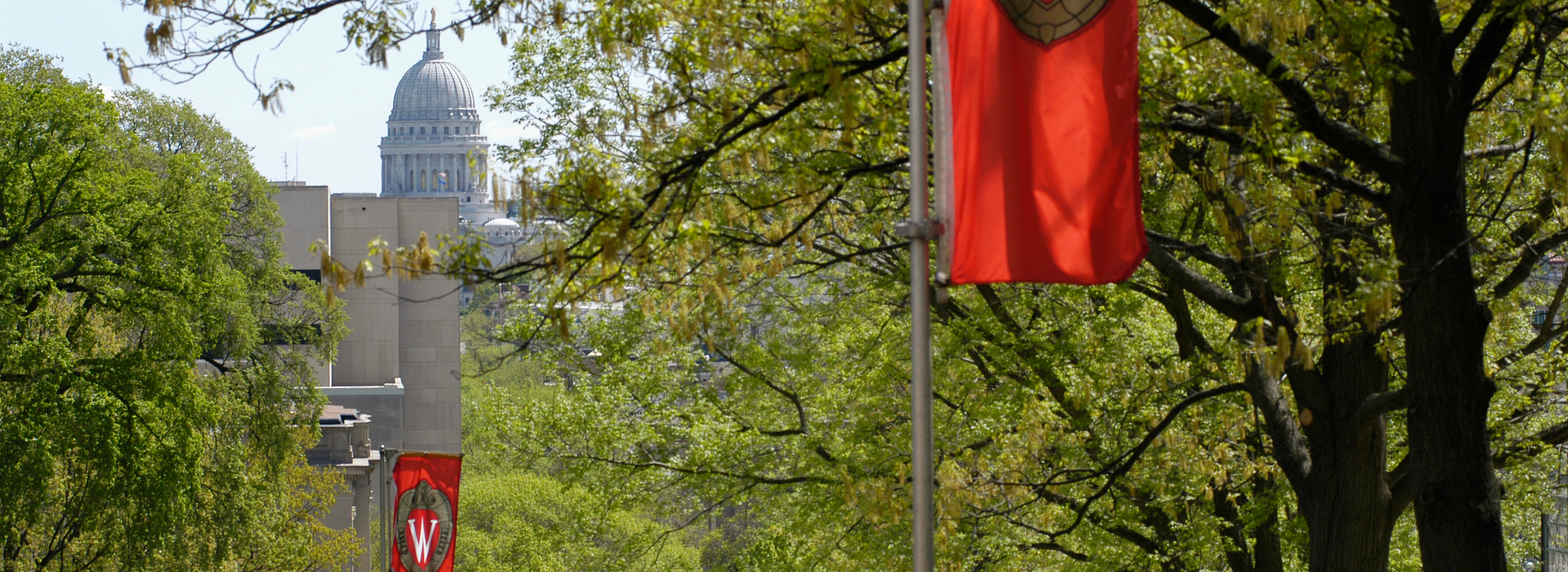 """W"" crest banners hang on Bascom Hill during spring. In the background is the Wisconsin State Capitol dome. (Photo by Jeff Miller)"
