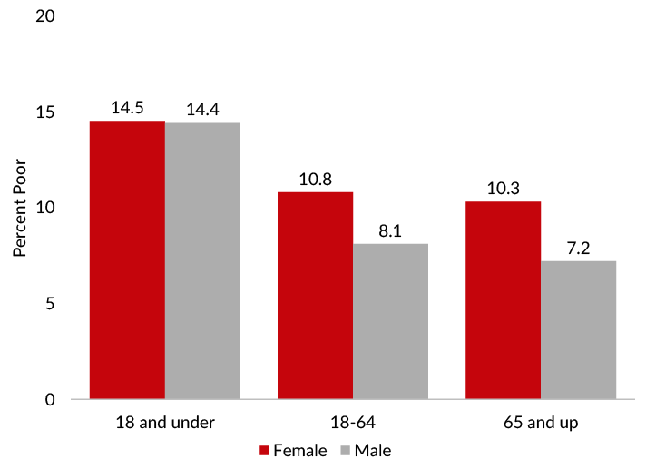 Poverty rates differed most between sexes among adults in 2019.