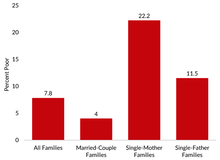 Poverty among single-parent families, especially those headed by a single mother, was highest among family types in 2019.