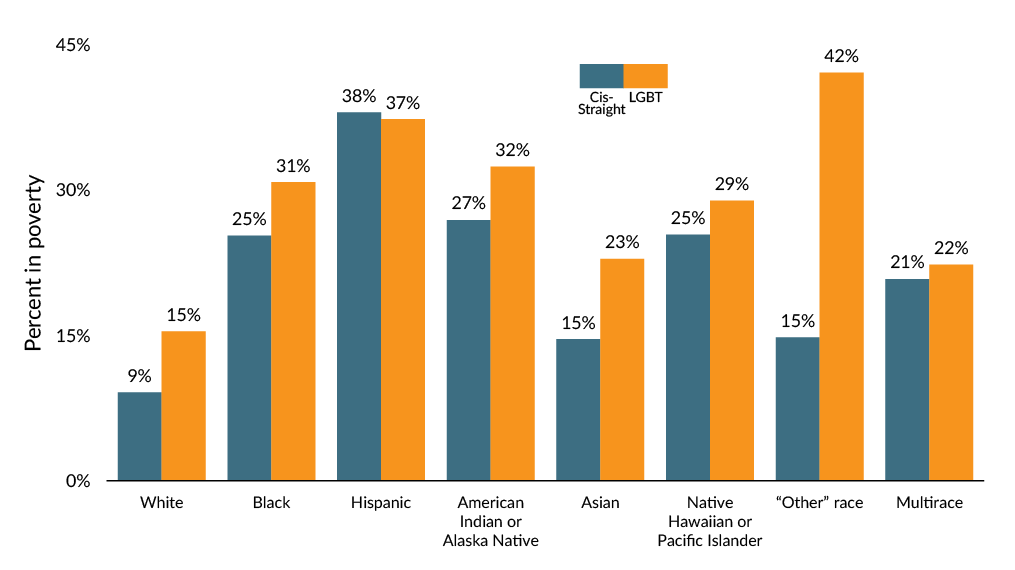 Graph showing poverty among LGBT people by race or ethnic group.